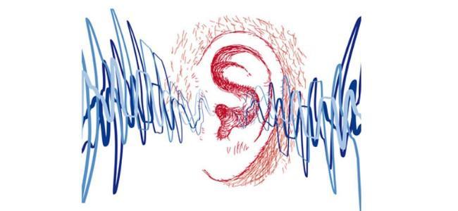 typy sluchu